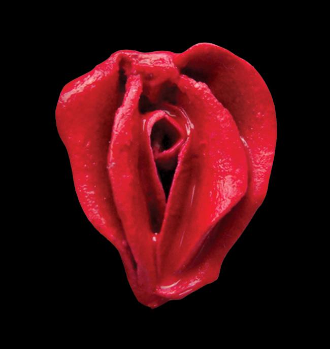 Erotic flower red